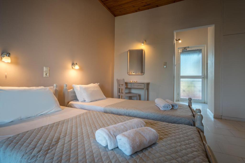 tripe room studio cactus hotel 2